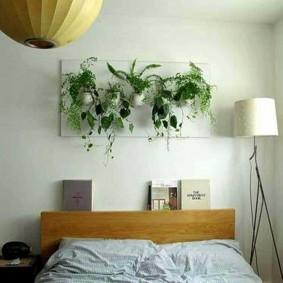 Живые цветы над кроватью в спальне