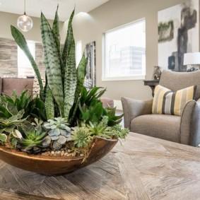 Декоративная композиция из живых растений