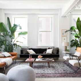 Белый потолок в комнате с живыми растениями