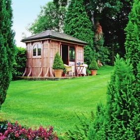 Зеленый газон перед деревянным сараем