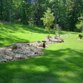 Партерный газон на садовом участке с уклоном