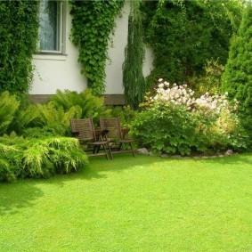 Садовые стульчики перед миксбордером из кустарников