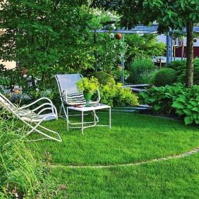 Парковый газон на площадке для отдыха