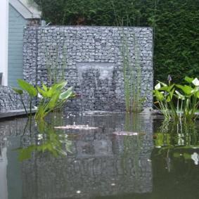 Искусственный водоем с цветущими растениями