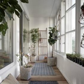 Комнатные растения в интерьере лоджии