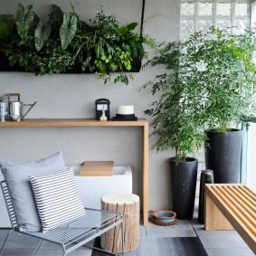 Живые растения на балконе многоэтажного дома