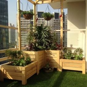 Деревянные контейнеры с комнатными растениями