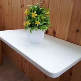 Комнатный цветок на белом столике