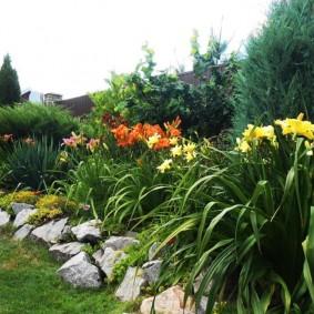 Бутовый камень перед многолетними цветами