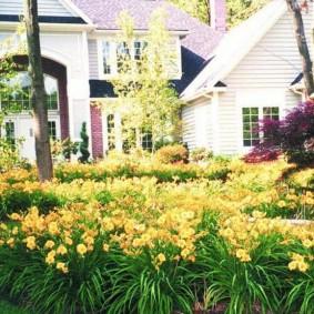Цветочная поляна перед загородным домом