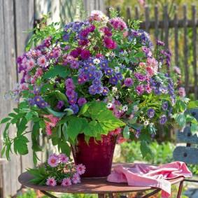Букет из садовых астр на небольшом столике