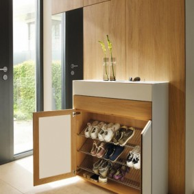Шкаф для обуви в стиле модерна