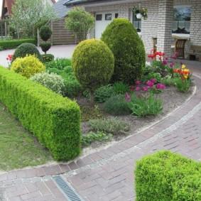 Зеленый бордюр из вечнозеленых растений