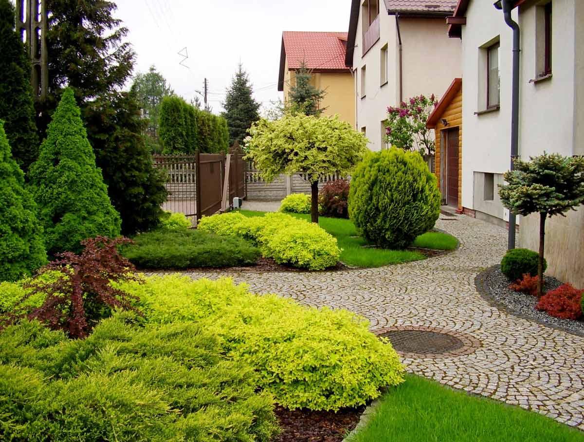 фотографии озеленение небольшого сада генеральных