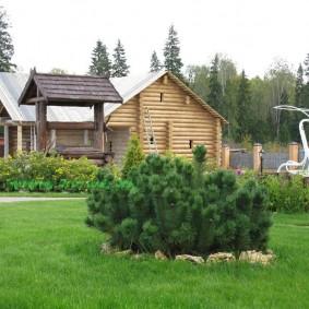 фото загородного участка с бревенчатым домом