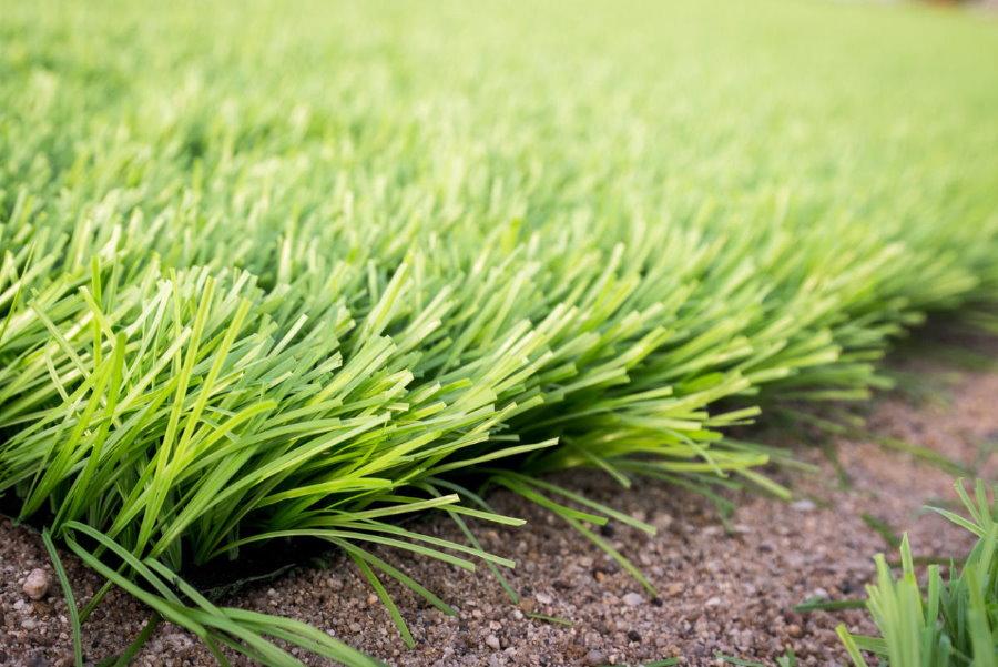 Фото искусственного газона полузасыпного типа