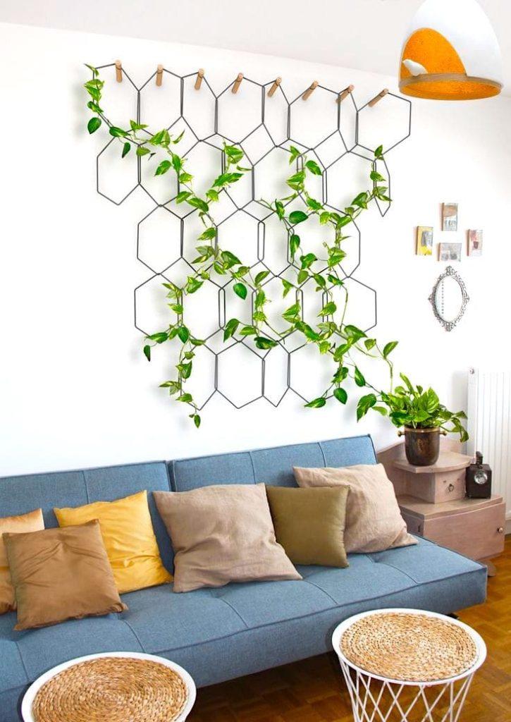 Вьющийся плющ на белой стене в квартире