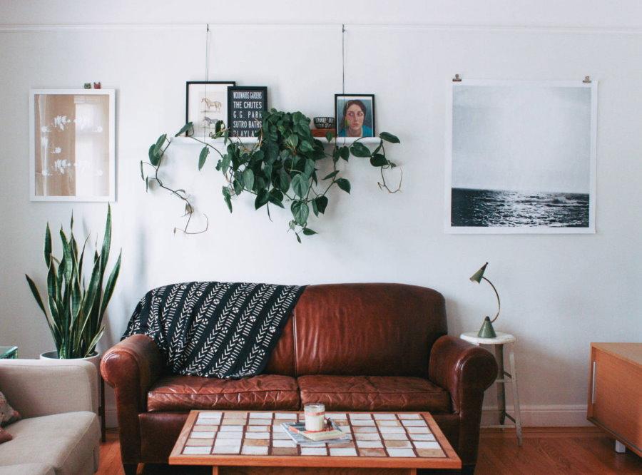 Декор растениями стены над кожаным диваном