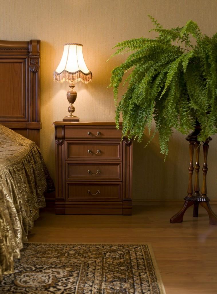 Папоротник около кровати в спальной комнате