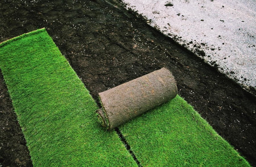 Укладка рулонного газона на плодородную почву