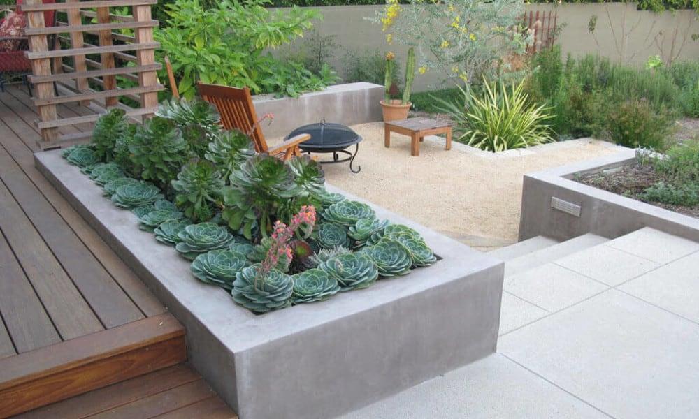 Прямоугольная клумба из бетона с неприхотливыми растениями