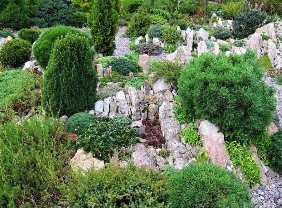 Альпийская горка Чешская скала из плотно установленных камней