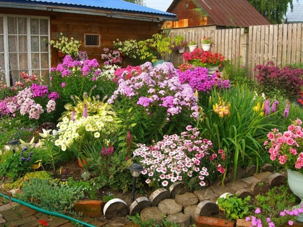 Цветущая клумба на садовом участке