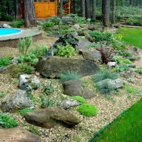Садовый рокарий между бассейном и газоном
