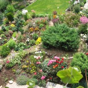 Вид сверху на садовый рокарий