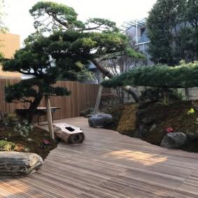 Террасная доска как покрытие для садовых дорожек