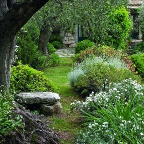 Пейзажный сад на загородном участке