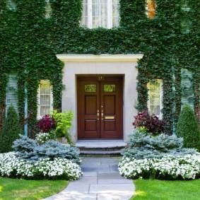 Вертикальное озеленение фасада частного дома