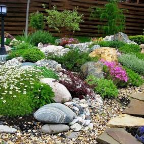 Каменистая клумба с местными растениями