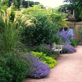 Садовый миксбордер с высокими растениями