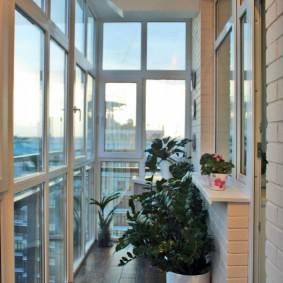 Узкий балкончик с комнатными растениями