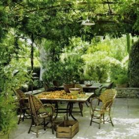 Место для отдыха на даче под заросшей перголой