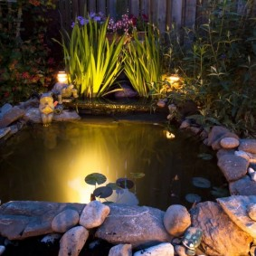 Ночная подсветка садового пруда