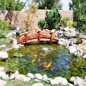 Оформление декоративного водоема с живыми рыбами