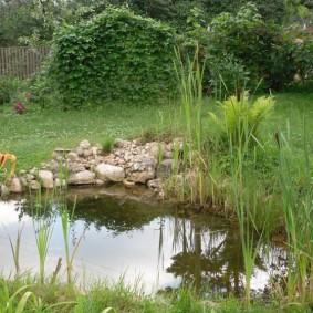 Ровная поверхность воды в маленьком пруду