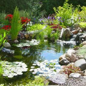 Водоем в естественном стиле с дикими растениями