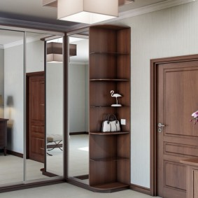 Темно-коричневая дверь во входной зоне квартиры