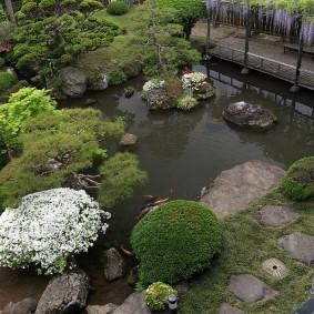 Низкорослые кустарники вокруг водоема в восточном стиле