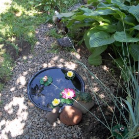 Маленький пруд в тенистом месте сада
