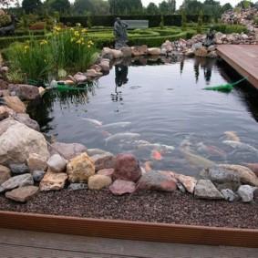 Садовый пруд для разведения декоративных рыбок