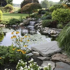 Зеленые растения на участке с водоемом