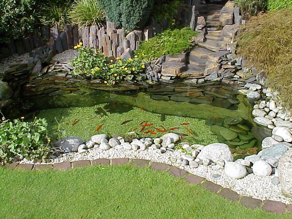 Пример декора камнями пруда в саду