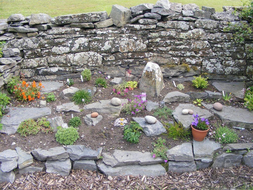 Альпинарий Каменистая стенка на садовом участке