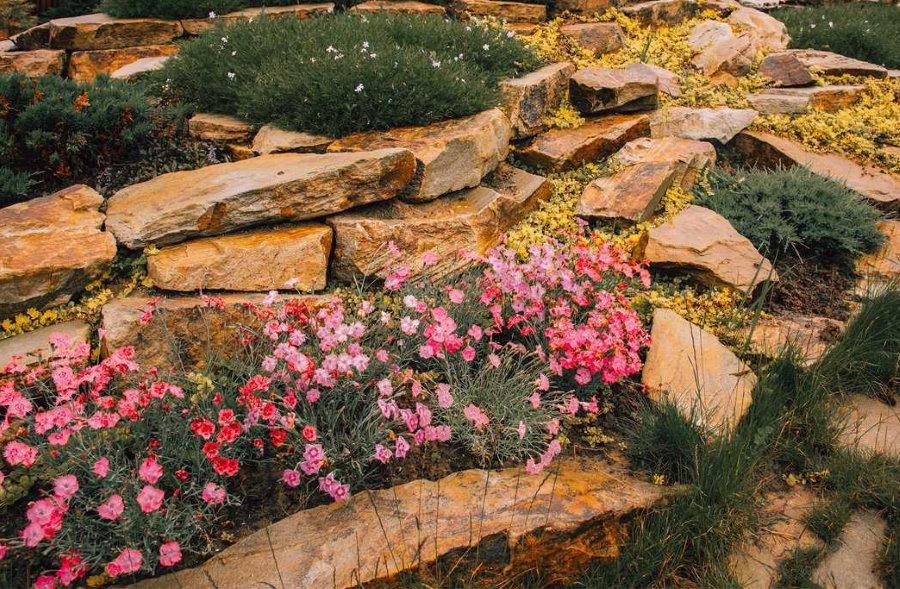Плоские камни на альпийской горке в саду