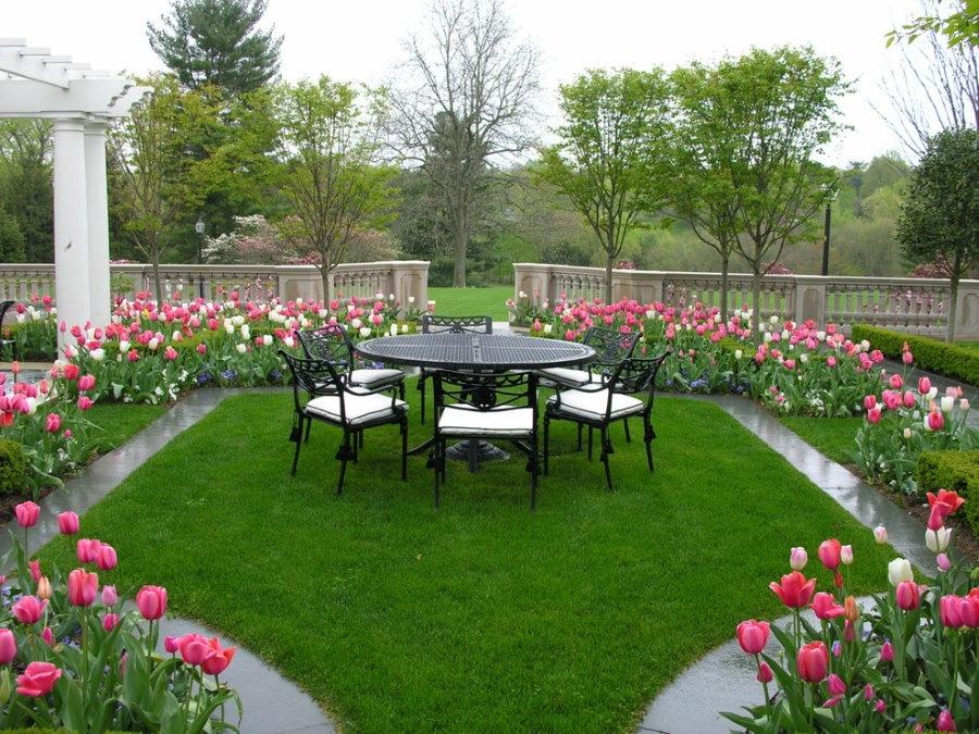 Клумбы-бордюры с весенними цветами