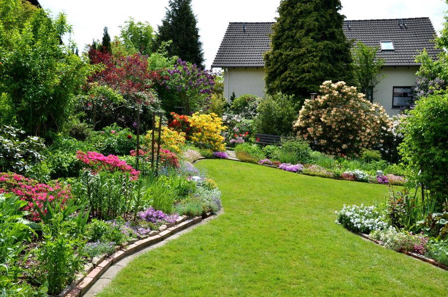 Партерный газон в ландшафте садового участка